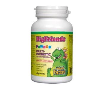Natural Factors - Big Friends - Multi Probiotic powder - 3 billion