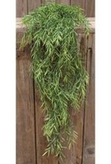 Dill Leaves Hanging Bush, 34""