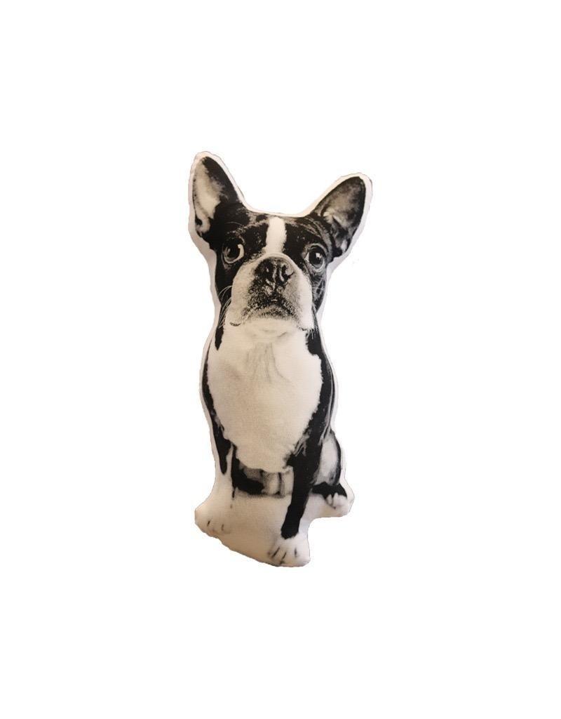 Faire Boston Terrier Decorative PIllow