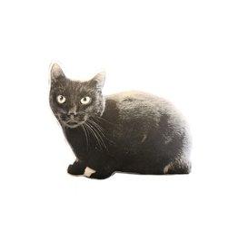 Faire Black Cat Decorative PIllow