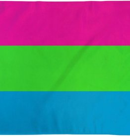 Flags Importer Polysexual Flag