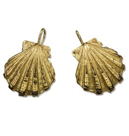 Scallop Shell Earrings - 14K Gold (Wire)