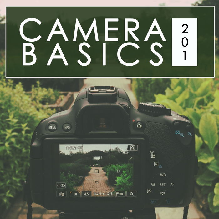 Camera Basics 201: Getting to Know Your Camera (May 1, 2019)