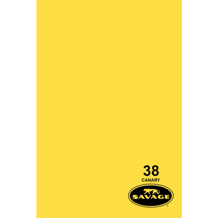 "Savage 86"" Seamless Paper Canary"