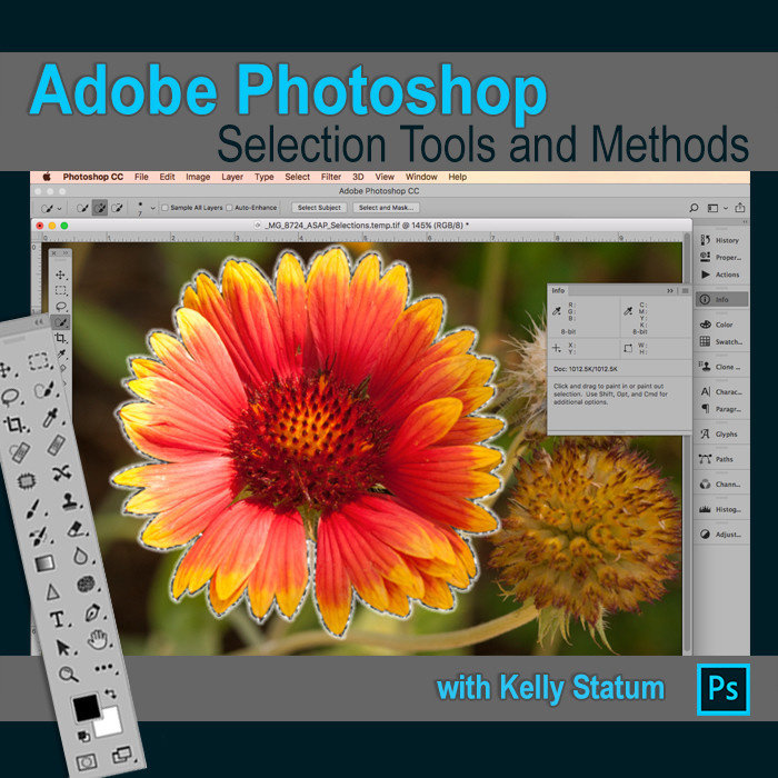 Photoshop Selection Tools and Methods (Feb 18 2020) DAYTIME