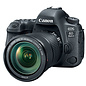 Canon EOS 6D Mark II w/ 24-105mm IS STM