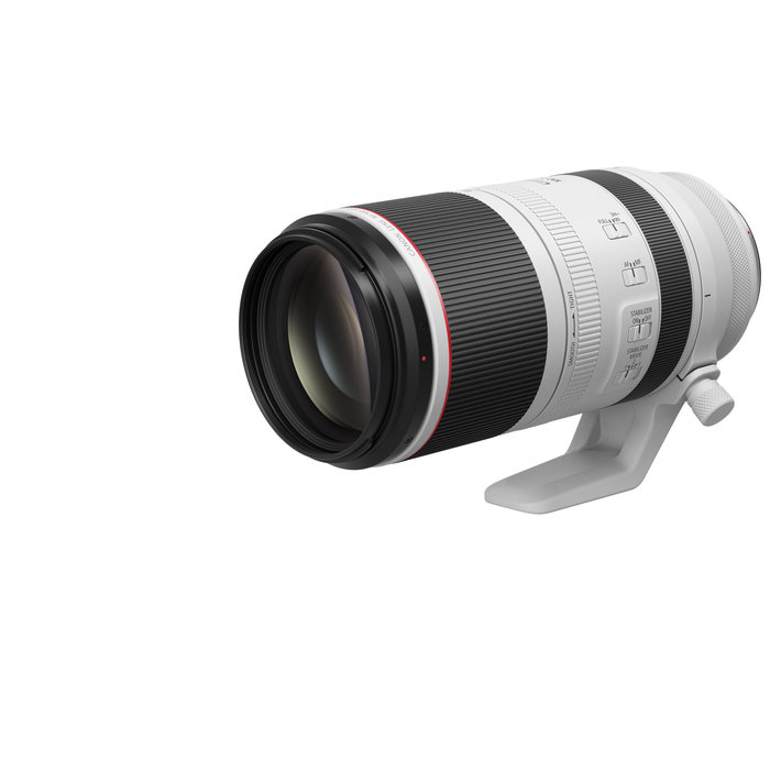 Canon RF 100-500mm F4.5-7.1 L IS USM