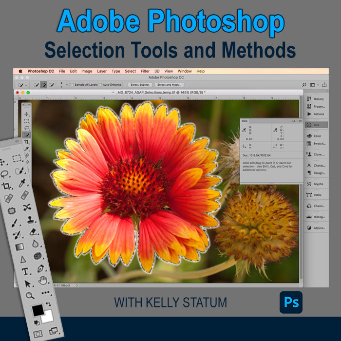 Photoshop Selection Tools and Methods - *Date TBD*