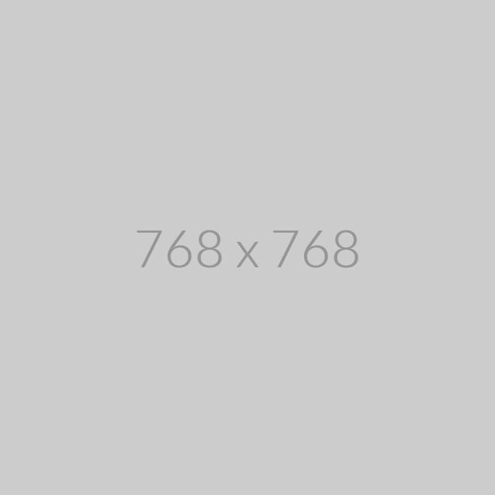 Promaster ProMaster SDXC 256GB Advanced 633x U3