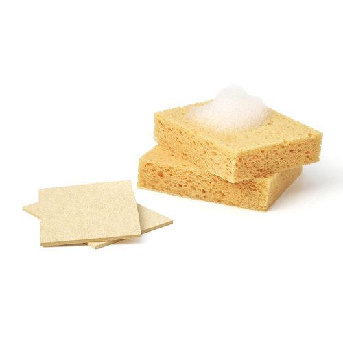 Compostable Sponges