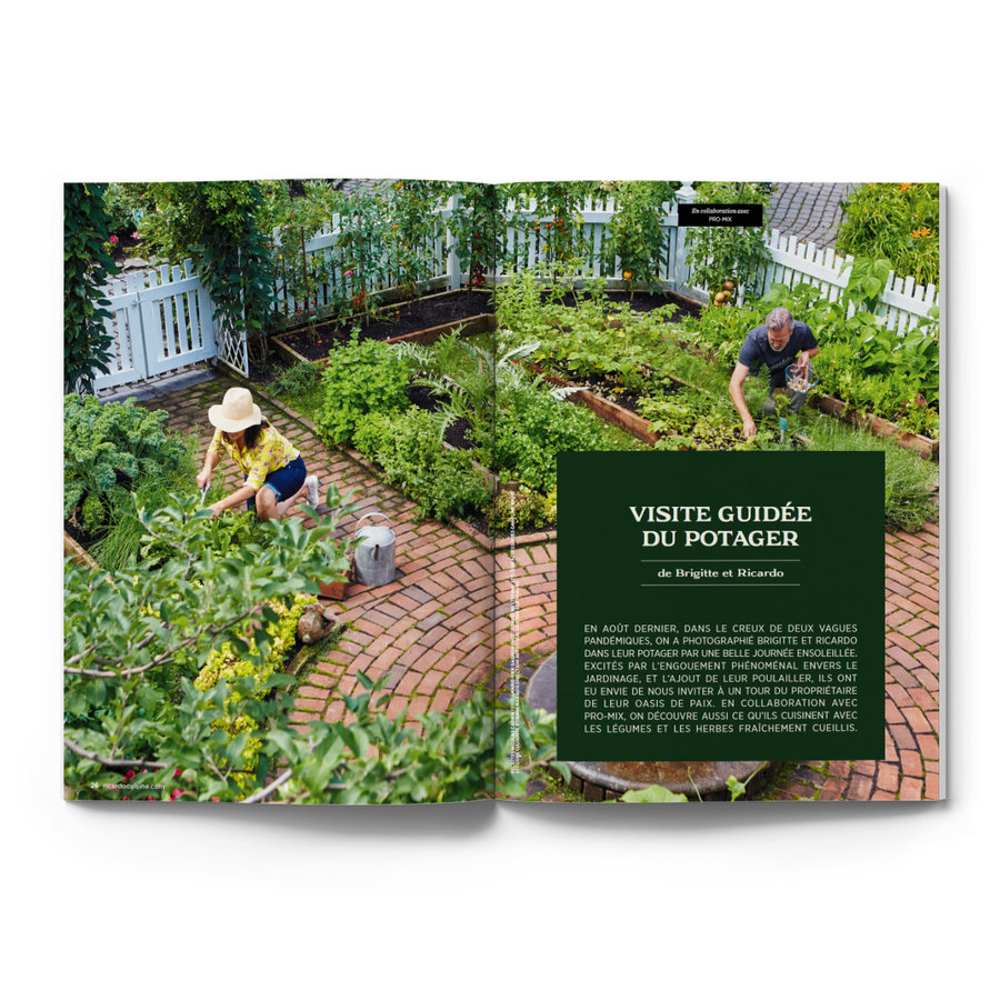 Summer Issue (Volume 19. Number 6) - Photo 3