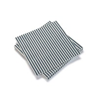 White Paper Napkins with Blue Stripes