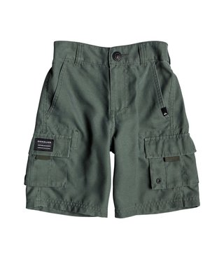 "Boy's 2-7 Rogue Surfwash 14"" Amphibian Boardshorts - Thyme"