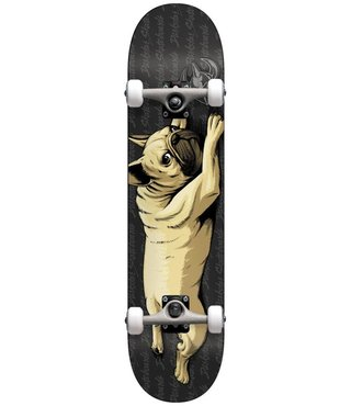 Darkstar Bulldog Black 7.75 First Push Premium Complete Skateboard w/ Backpack