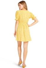 BB DAKOTA BB Dakota Floral Tradition Mini Dress