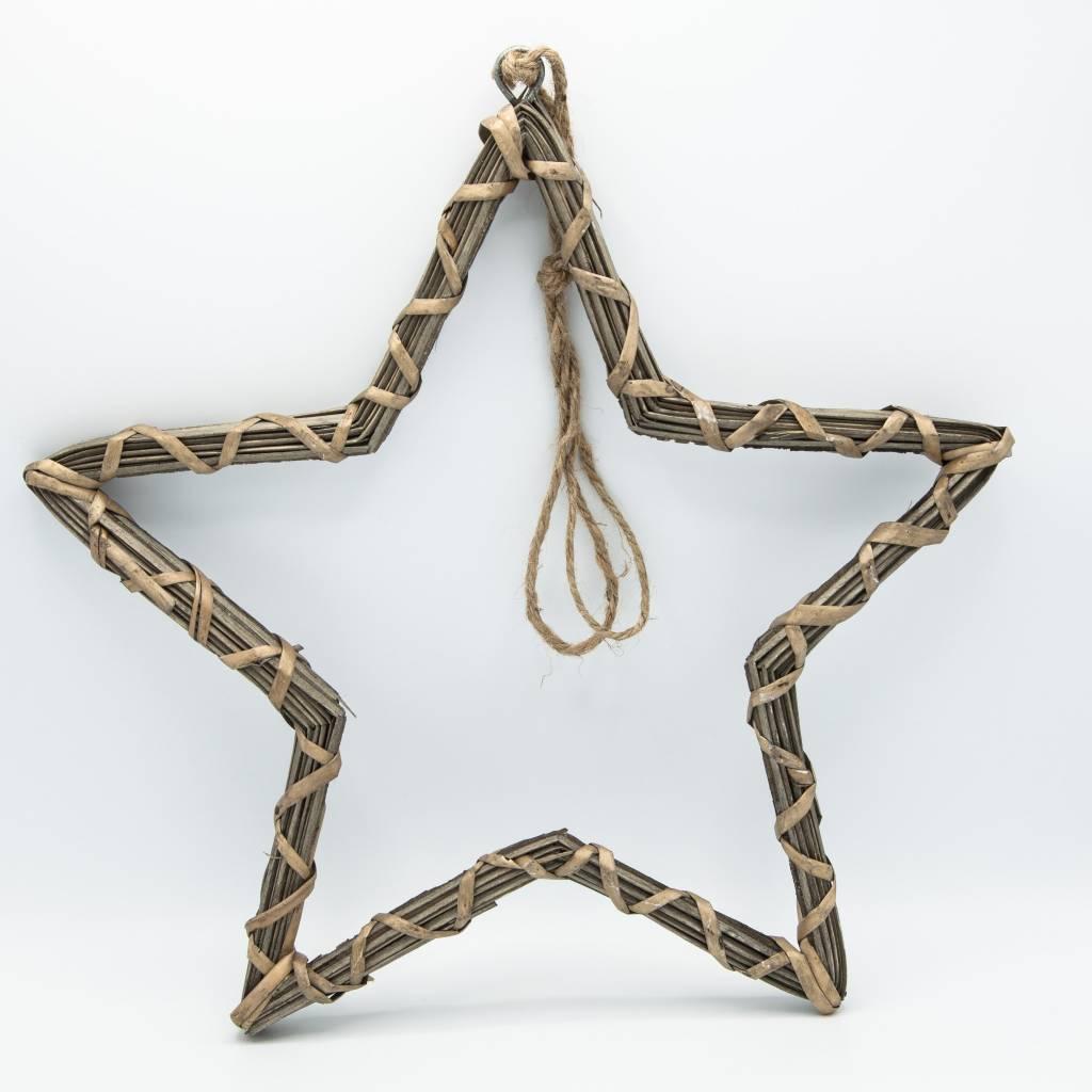 """étoile saule 14"""""""