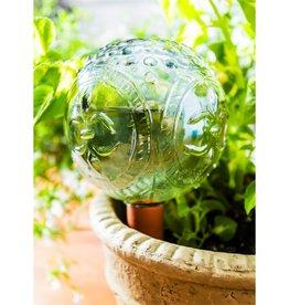 Bulle d'eau pour les plantes