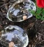 Duo de pierres d'eau
