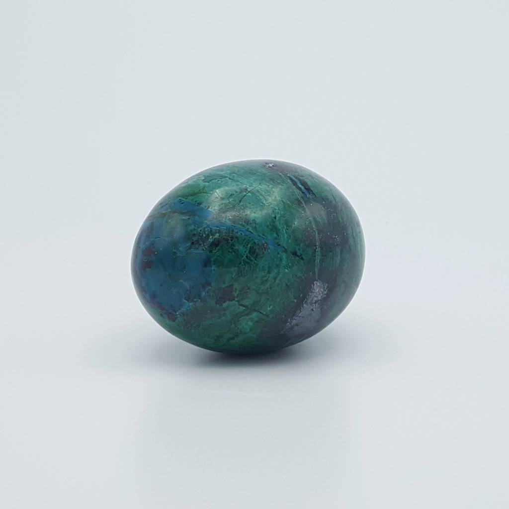 oeuf chrysocolle