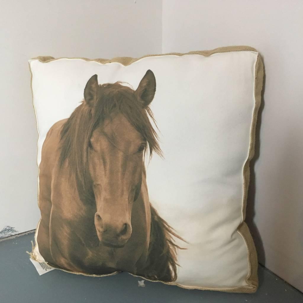cheval 49cm