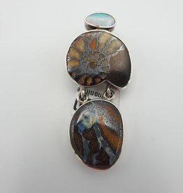 ammonite et agathe