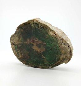 Bois fossilisé vert