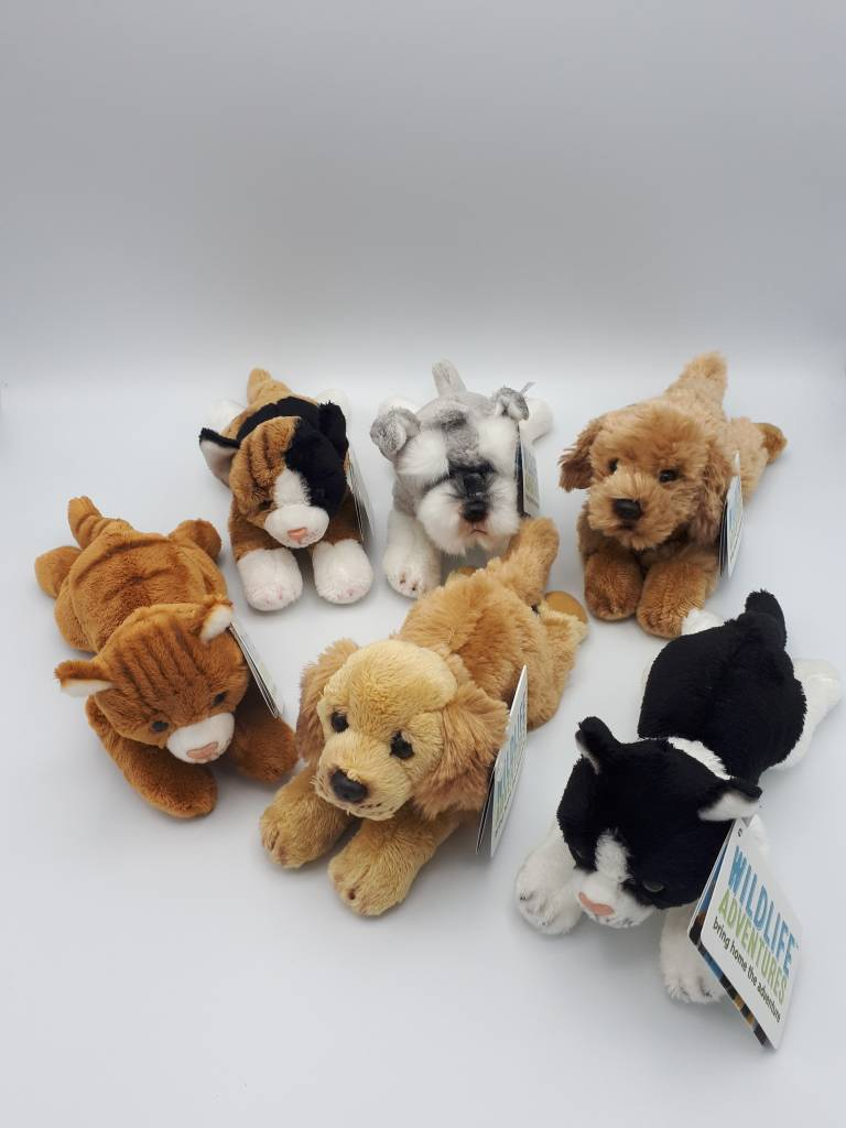 mini-animaux