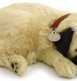 Perfect Petzzz Chiot Carlin - Pug
