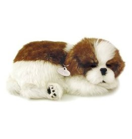 Perfect Petzzz Shih Tzu puppy that breathes