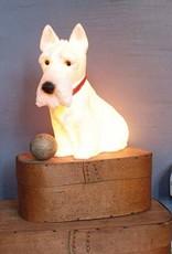 Accessoires Lampe veilleuse Scotty