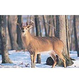 Delta Delta #402 Deer Target