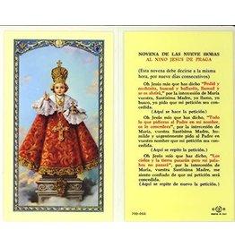 WJ Hirten Surtidas tarjetas lanimadas