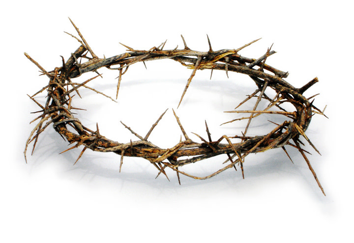 3 Arches USA Crown of Thorns