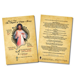 Stubenville Press How to Pray the Divine Mercy Chaplet Faith Explained Card
