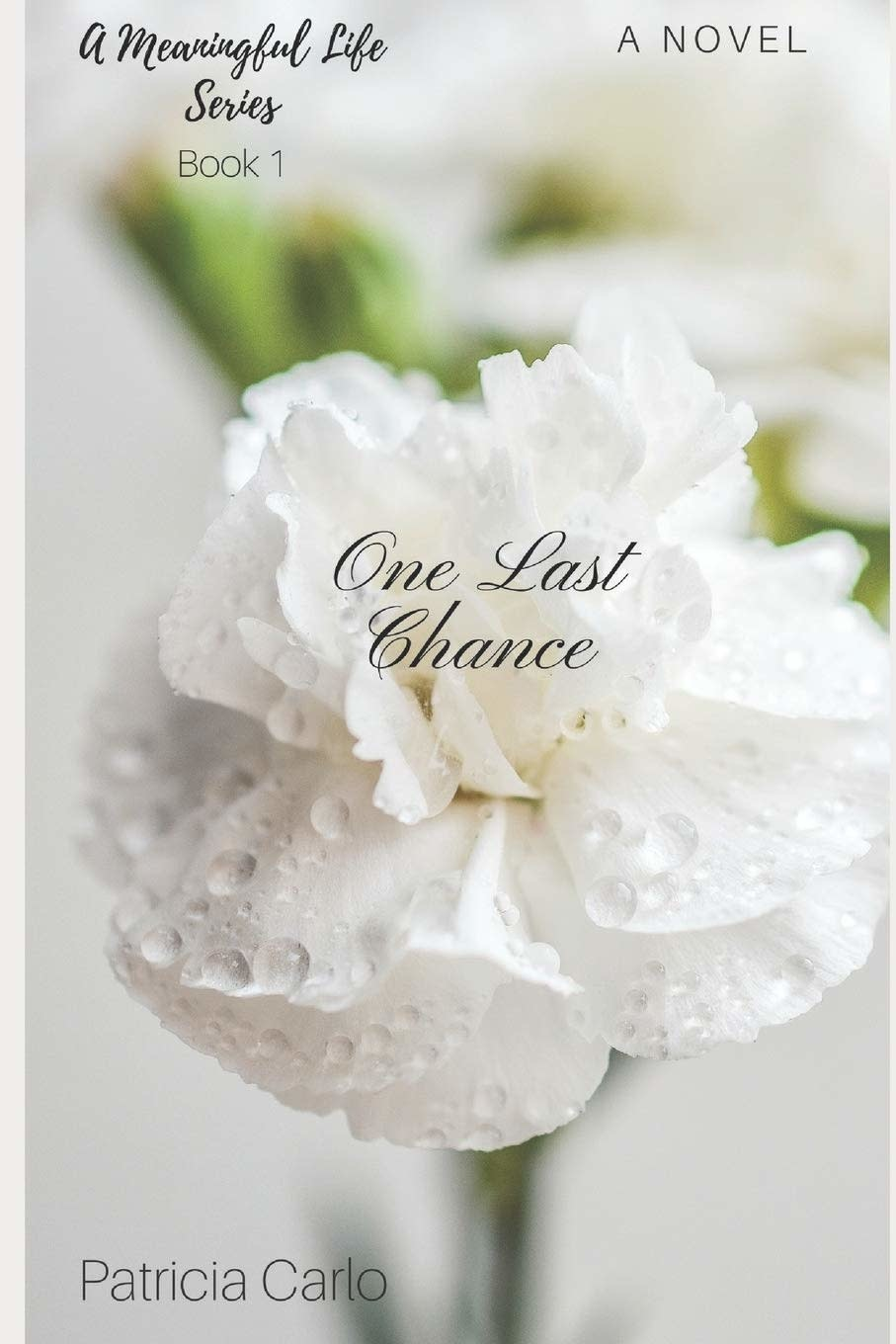 Independently published One Last Chance (A Meaningful Life Book 1)