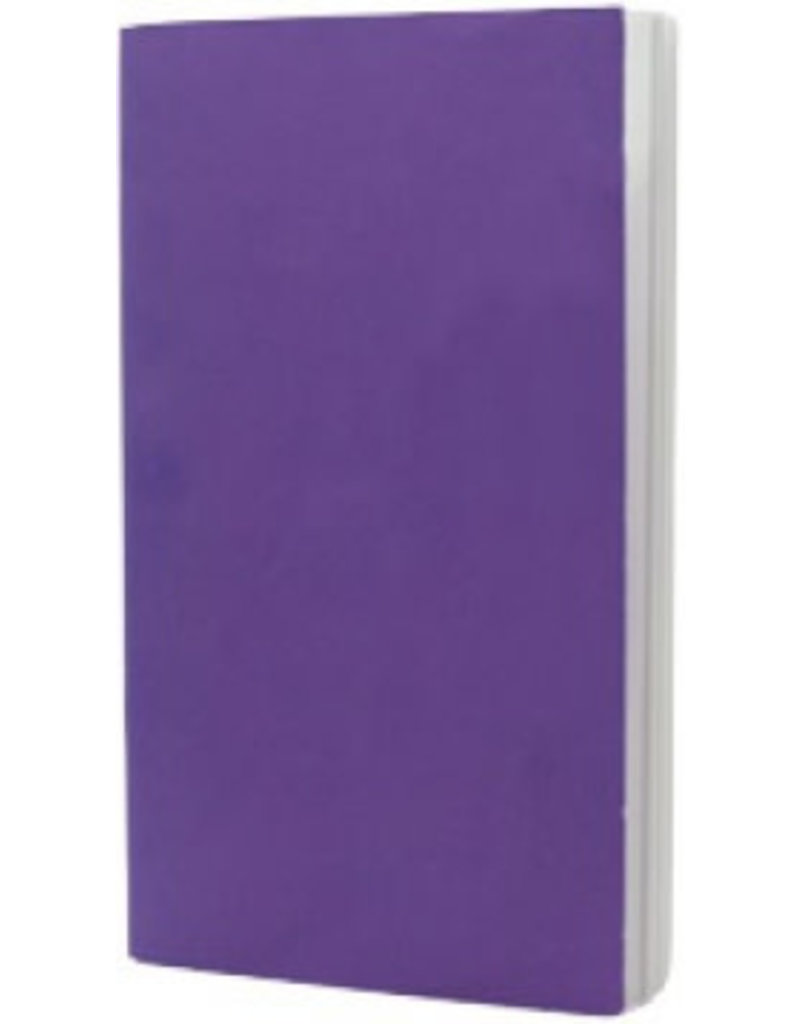 Little Books of the Diocese of Saginaw Little Purple Book: Lent (Children 6-12)