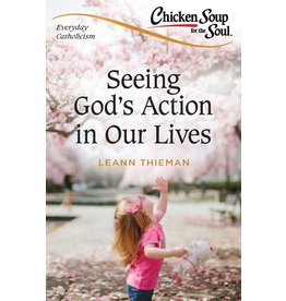 Sophia Institute Press Chicken Soup for the Soul: Everyday Catholicism Seeing God's Action in Our Lives
