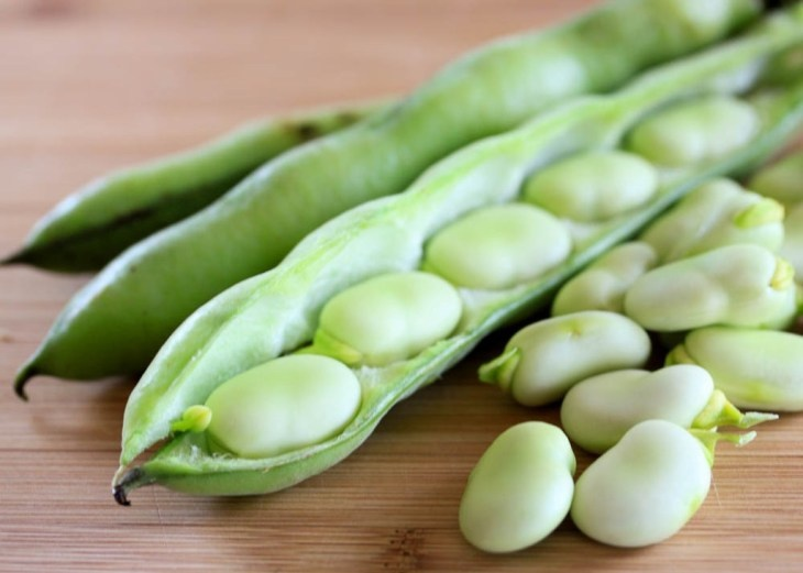 St. Joseph's Day Fava Bean Giveaway
