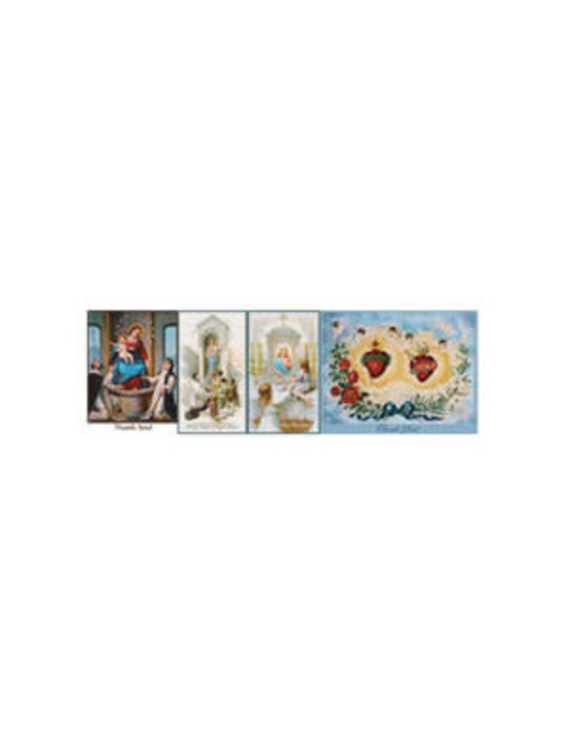 Saints Galore Catholic Publishing Thank You Assortment cards-box of 12