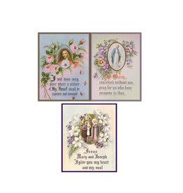Saints Galore Catholic Publishing Blank Assortment  box of 12 greeting cards