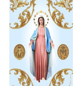 Blessed Americas Our Lady of Grace Scarf