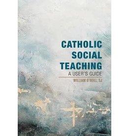 Orbis Books Catholic Social Teaching: A User's Guide