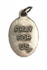 Lumen Mundi Saint Francis Pray For Us Medal