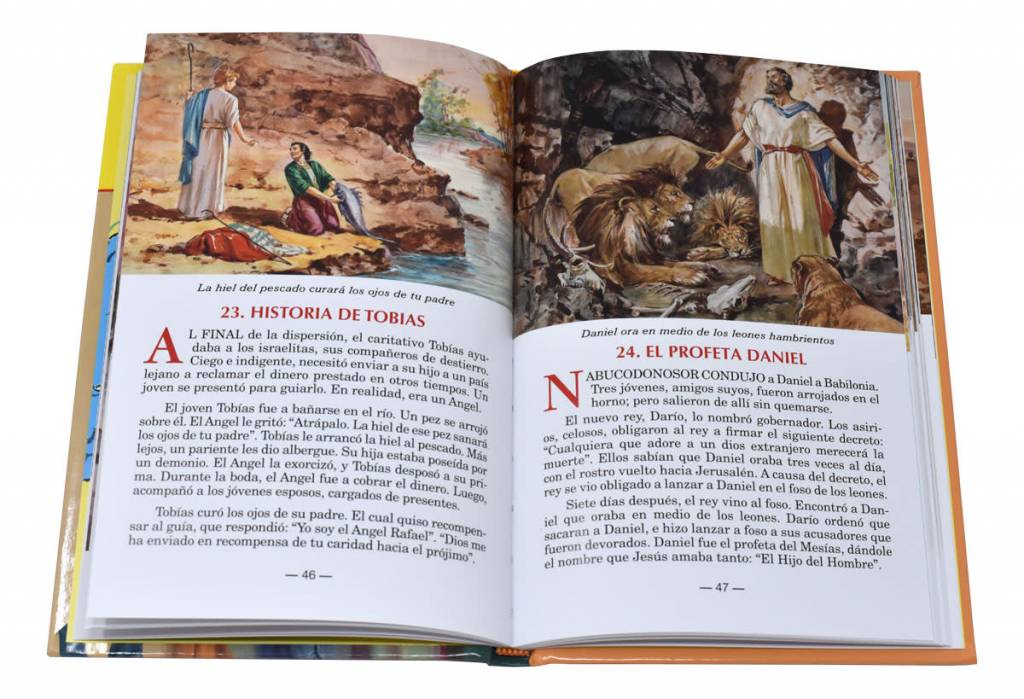 Catholic Book Publishing Corp La Biblia Ilustrada