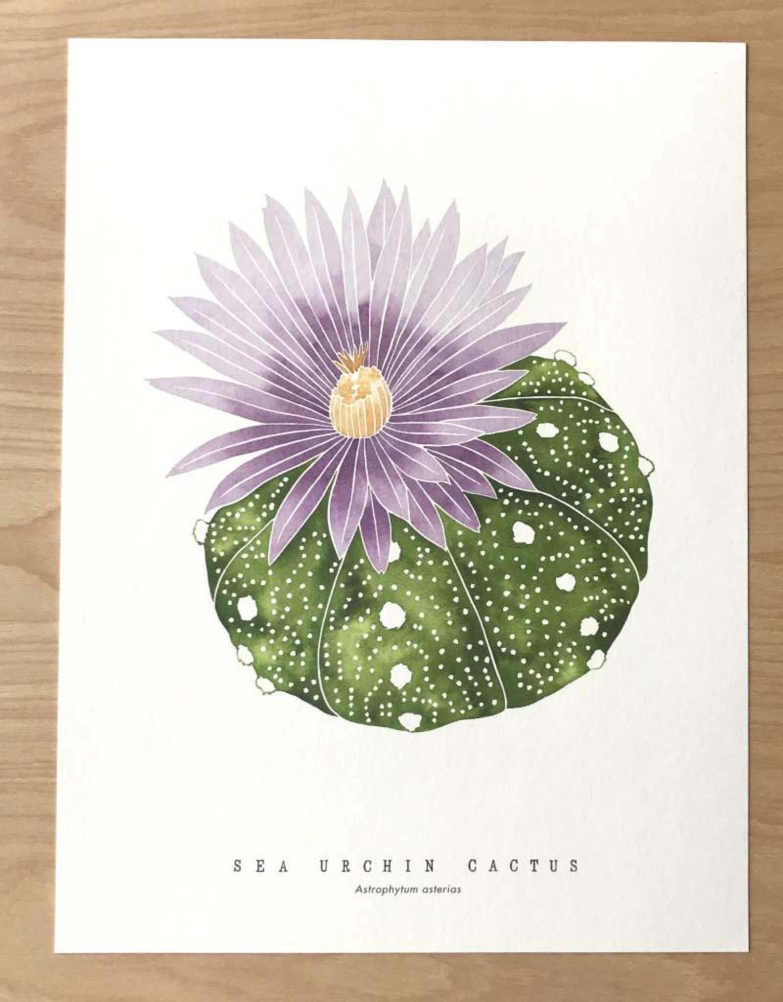 Living Pattern Print- Sea Urchin Cactus