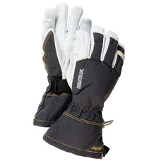 Hestra Army Leather Gore-Tex Gloves 2020
