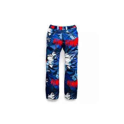 The North Face Aboutaday Pants 2020