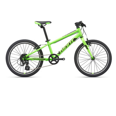 Giant Kids' ARX 20 Bicycle 2020
