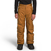 The North Face Boys' Freedom Insulated Pants 2021