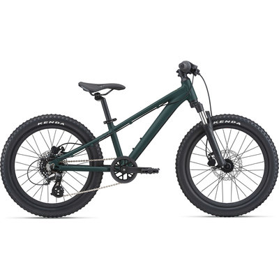 Giant STP 20 FS Mountain Bike 2021